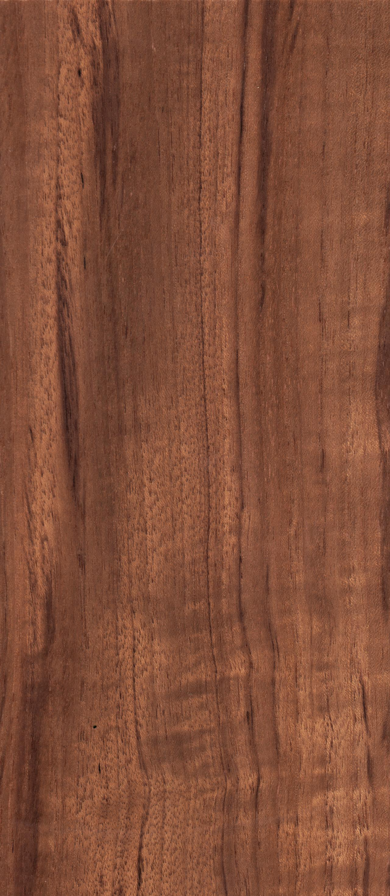 The gallery for --> Natural Walnut Wood Texture